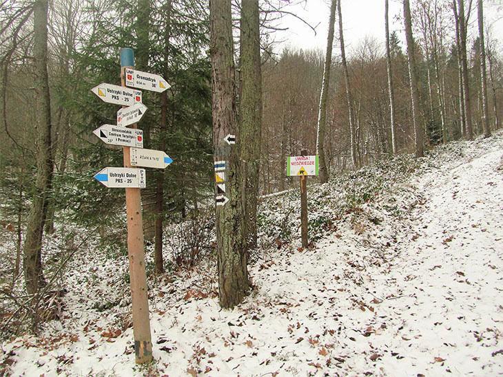 Напрямки для туристів на вході в ліс
