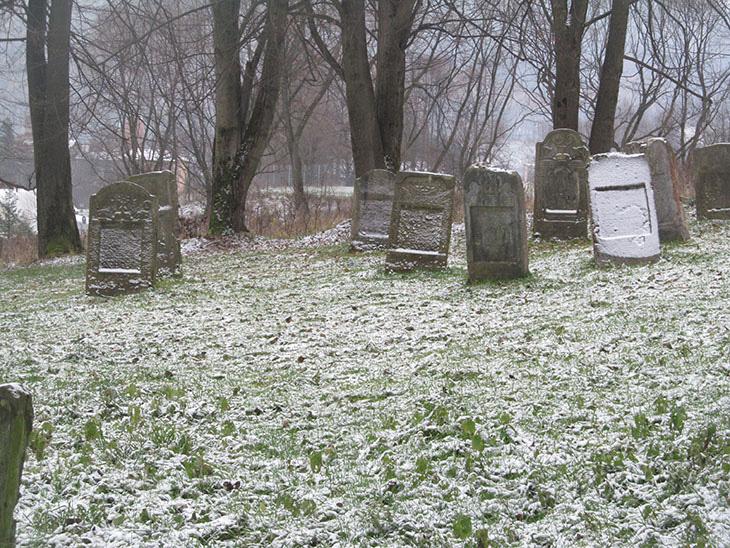Єврейський цвинтар на околиці містечка