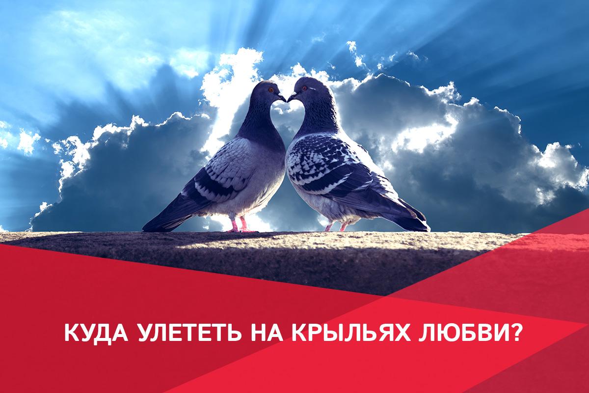 Куда утелеть на крыльях любви?