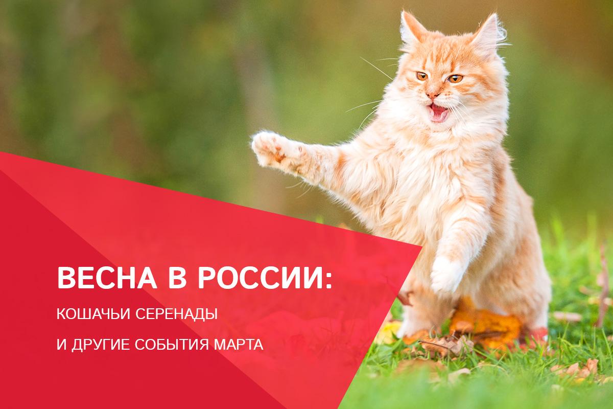 Март в России