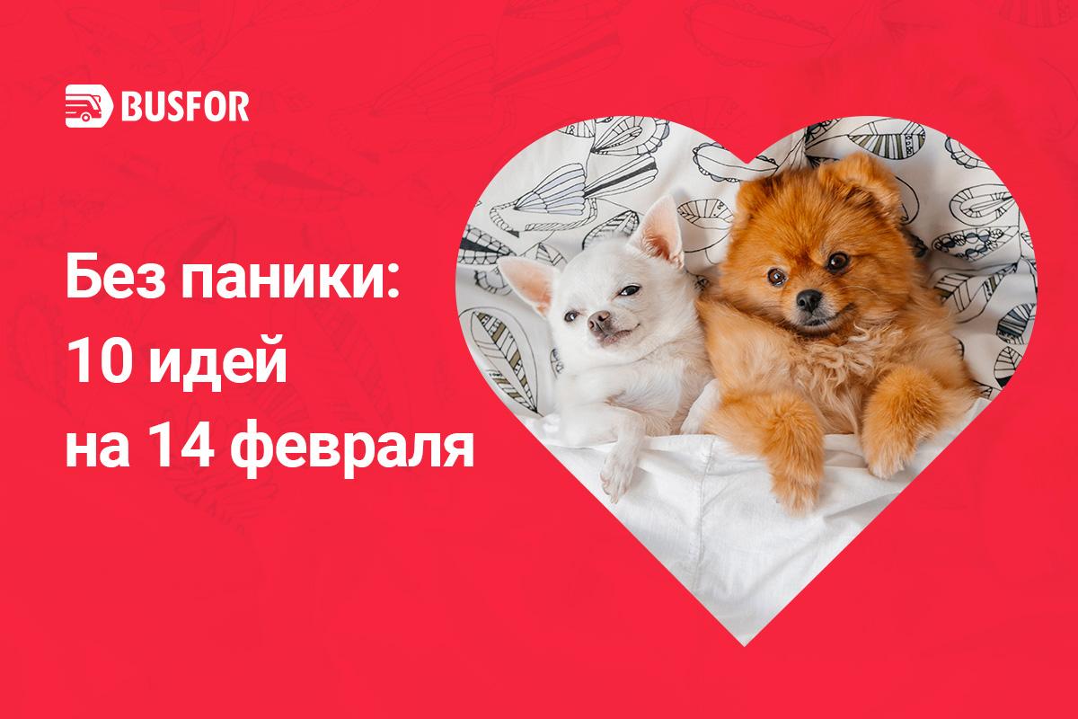 День Валентина – Busfor.by