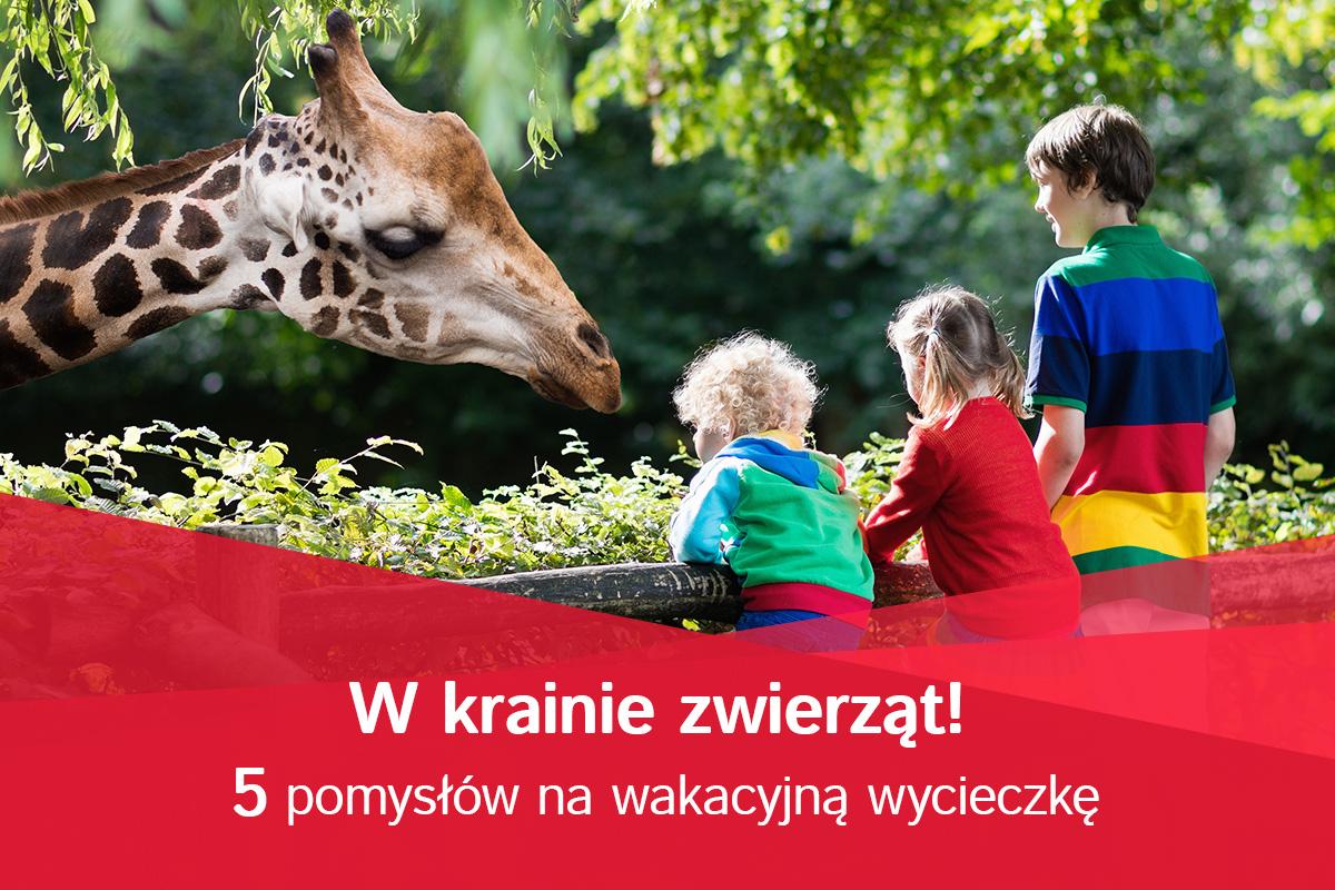 5 najciekawszych zoo w Polsce