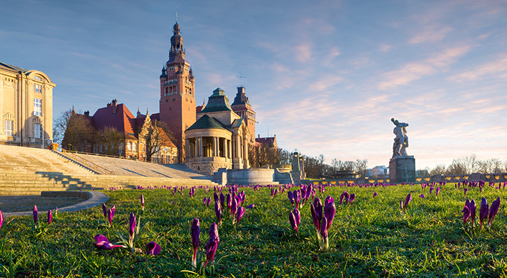 Szczecin – miasto pięknej zieleni i magnolii
