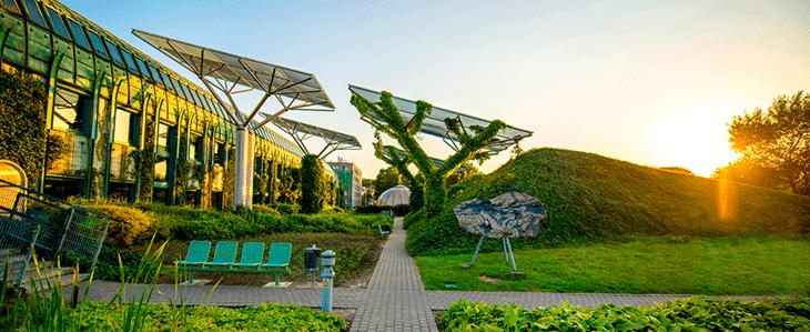 Сад на крыше университета в Варшаве