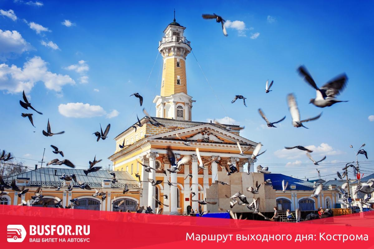 Маршрут выходного дня: Кострома
